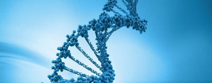 Biotechnology To Be Developed in Armenia